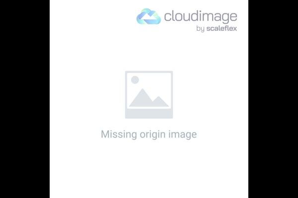 las cinco brochas para maquillar imprescindibles en tu maletin de maquillaje